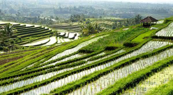 indonesia entre os países mais ricos da Ásia