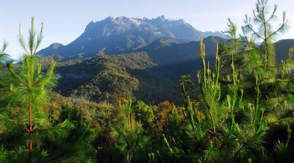 Parque Nacional do Kinabalu uma das maiores florestas do mundo