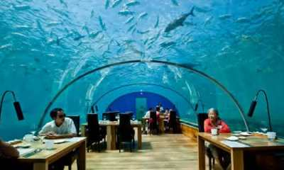 Top 10 restaurantes mais caros do mundo