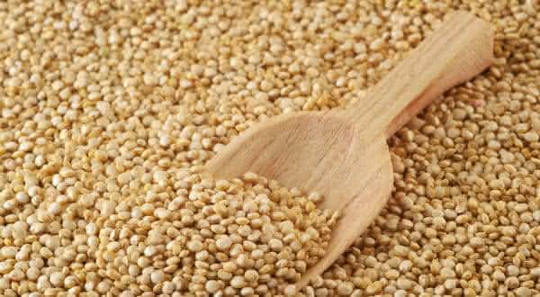 soja um dos alimentos ricos em proteinas