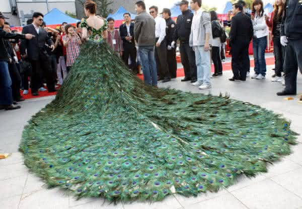 Vestido de Pena de Pavao entre os vestidos de noiva mais caros do mundo
