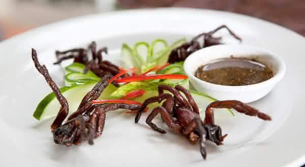 aranhas fritas entre os alimentos mais bizarros do mundo