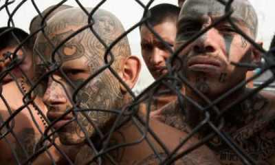 Top 10 organizações criminosas mais perigosas do mundo