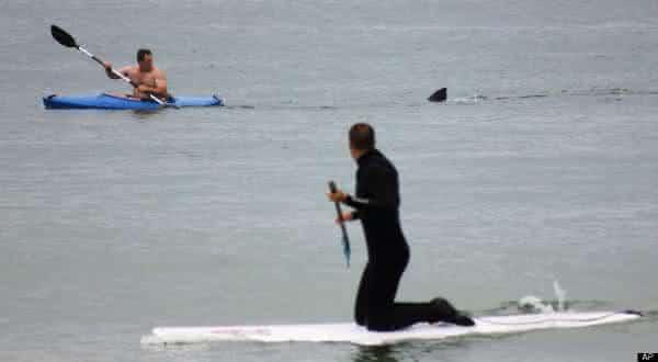 Smyrna Beach entre as praias mais perigosas do mundo