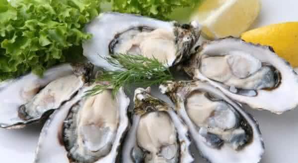 ostras entre os melhores alimentos afrodisiacos