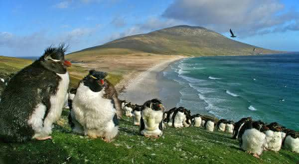 ilhas malvinas entre os paises menos densamente povoados do mundo