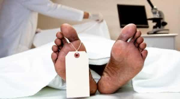 mais e mais matanca razoes pelas quais a eutanasia nao e a solucao