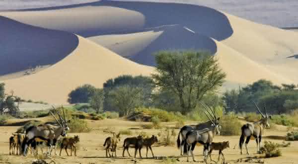 namibia entre os paises menos densamente povoados do mundo