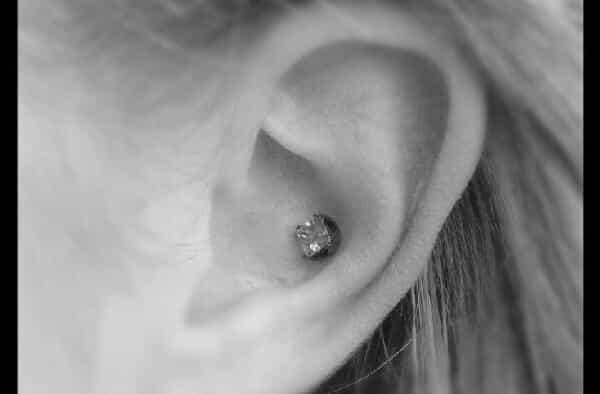 Piercing concha entre os tipos diferentes de perfuracao da orelha