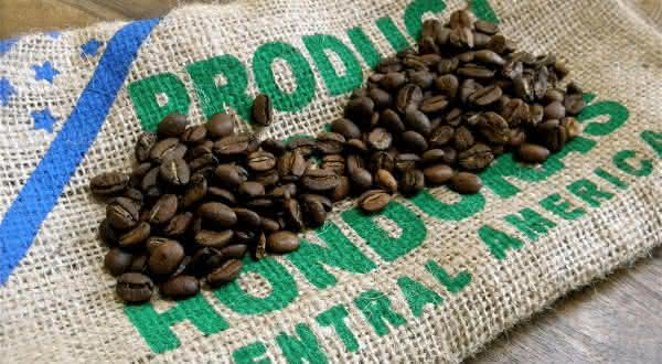 honduras entre os maiores produtores de cafes do mundo