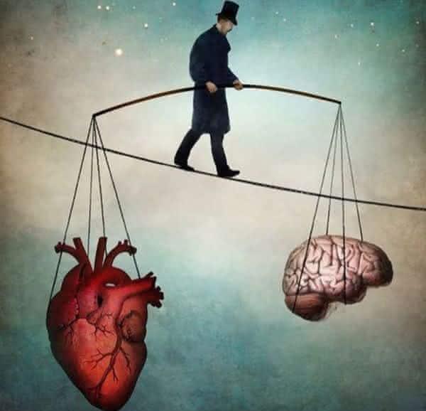 anatomia humana entre as razoes para acreditar em Deus