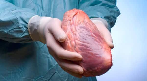 transplante de coração entre os procedimentos médicos mais caros do mundo