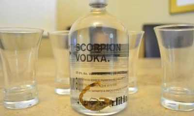 Scorpion Vodka entre as bebidas mais bizarras do mundo