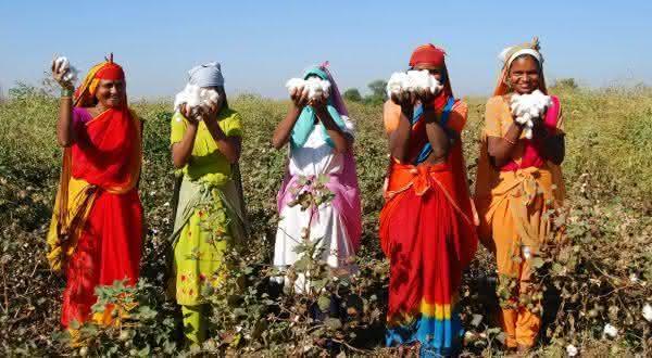 india entre os maiores exportadores de alimentos do mundo