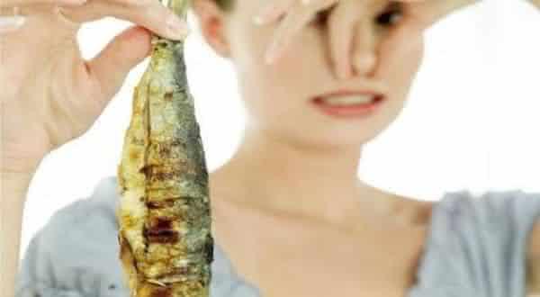 peixe estragado entre os piores odores do mundo