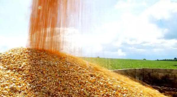 brasil entre os maiores exportadores de milho do mundo