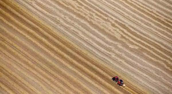 franca entre os maiores exportadores de milho do mundo