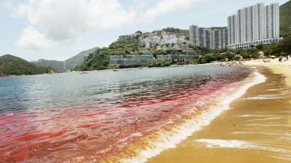 Mares vermelhas entre os fenomenos naturais mais incriveis do mundo