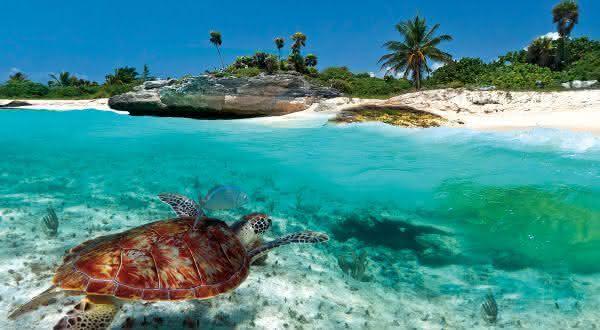 Antigua e Barbuda entre os países mais dependentes do turismo