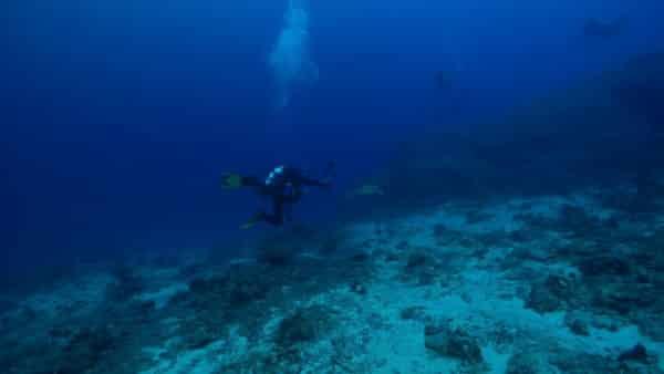 oceano indico entre oceanos e mares mais profundos do mundo