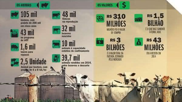 Fazenda Nova Piratininga 3 entre as maiores fazendas do Brasil