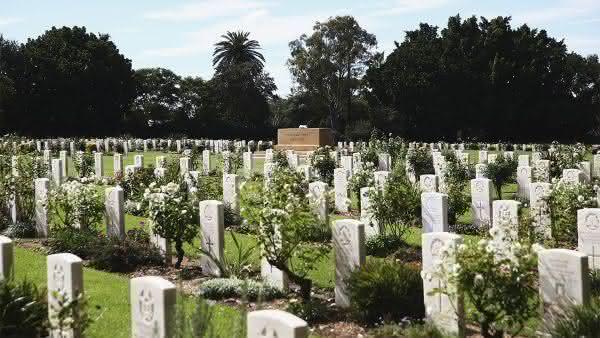 Rookwood Cemetery entre os maiores cemiterios do mundo