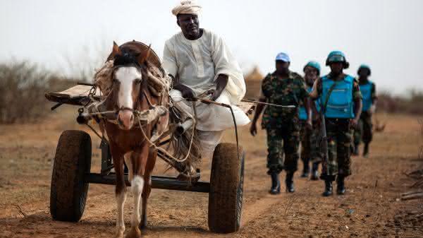 sudao entre os paises com mais cavalos no mundo