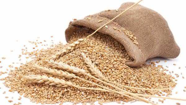 sacos de trigo entre os metodos de teste de gravidez bizarros
