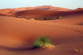 Mejores desiertos del mundo - El desierto mas grande del mundo