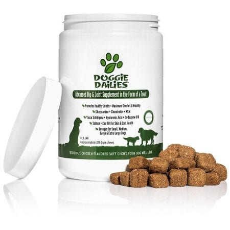 Top 10 Best Dog Joint Supplements in 2017 Reviews