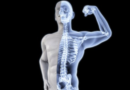 Fortalece los huesos