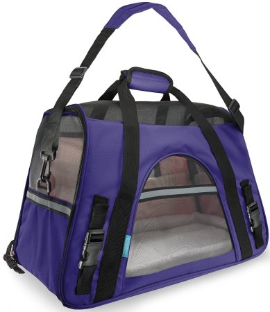 4.Top 10 Best Travel Tote Carrier Bags 2015