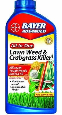 Best Weed Killers