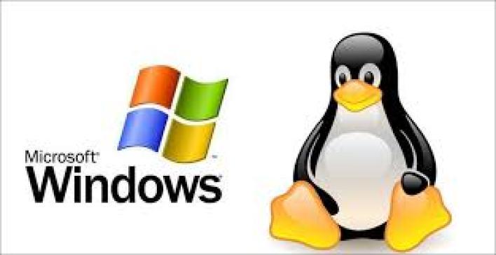 استضافة مواقع linux أو windows