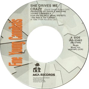 fine-young-cannibals-she-drives-me-crazy-1989-8