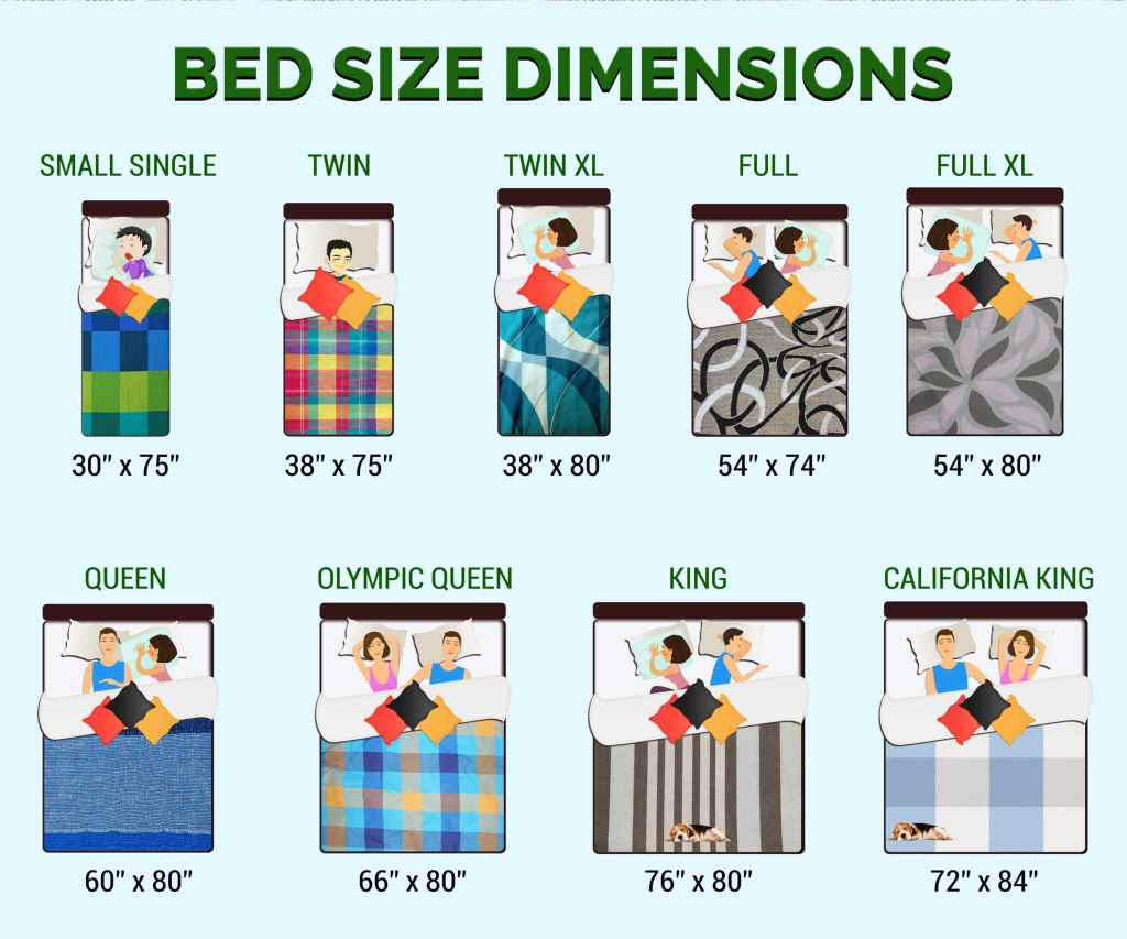 Infographic bed size dimensions