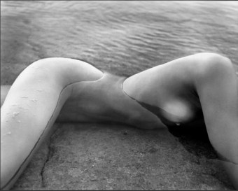 #3 Patrick Demarchelier Fine Art!