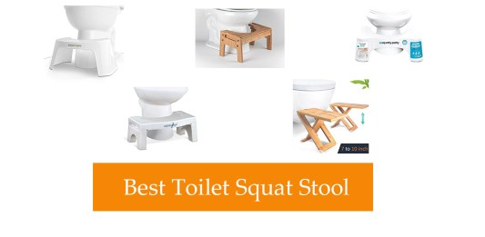 Best Toilet Squat Stool Review