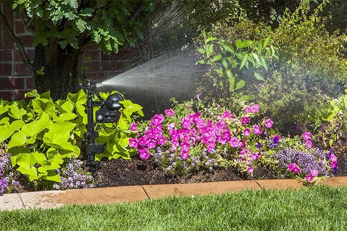 Best Motion Activated Sprinkler