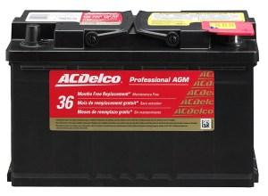 ACDelco 94RAGM Professional AGM
