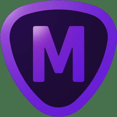 Topaz Mask – Topaz Labs