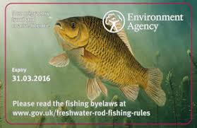 Buy a rod licence online
