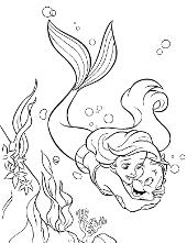 Aiel mermaid fish