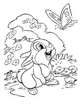 Thumper coloring books