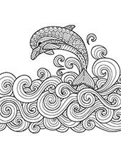 Dolphin in a sea