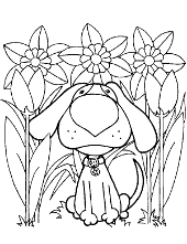 Spring view coloring books