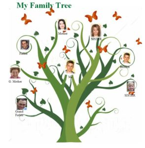 Family Tree Maker Crack With Updated Keys {June 2019}