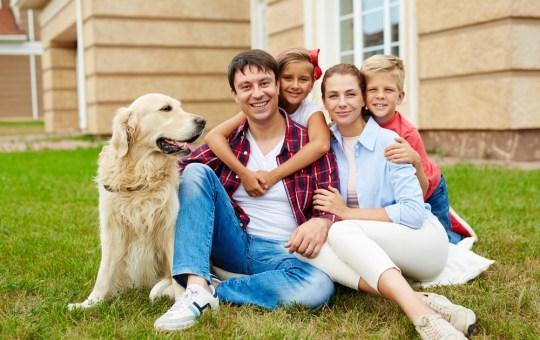 Cuidado y salud mascotas