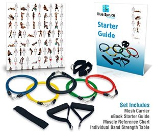 Resistance-Band-Set-Exercise-Bands-Crossfit-P90x-Yoga-Ideal-for-Arms-Legs-CoreWorkouts-Physical-Rehabilitation-Starter-Guide-Strength-Table-Wall-Chart-Replacement-Guarantee-0