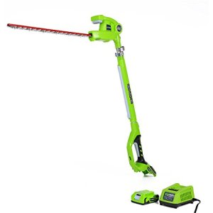 GreenWorks-22242-G-24-Li-ion-20-Inch-Cordless-Pole-Hedge-Trimmer-with-2AH-Battery-and-Charger-0